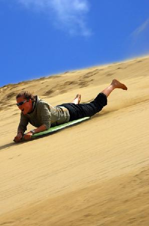 Fullers GreatSights Bay of Islands Day Tours : Sandboarding on a Cape Reinga Day tour