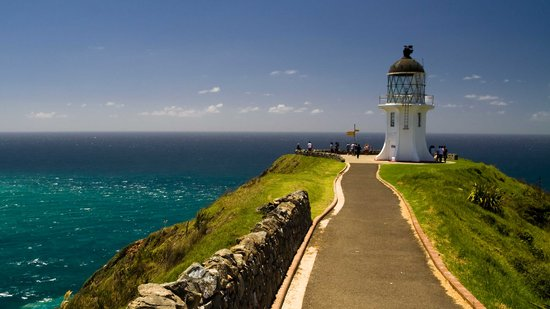 Fullers GreatSights Bay of Islands Day Tours : Cape Reinga