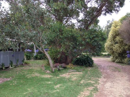 Flinders Chase Farm Stay: farm area