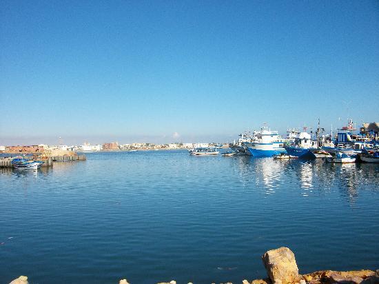 Club Oasis Marine: Port de Zarzis