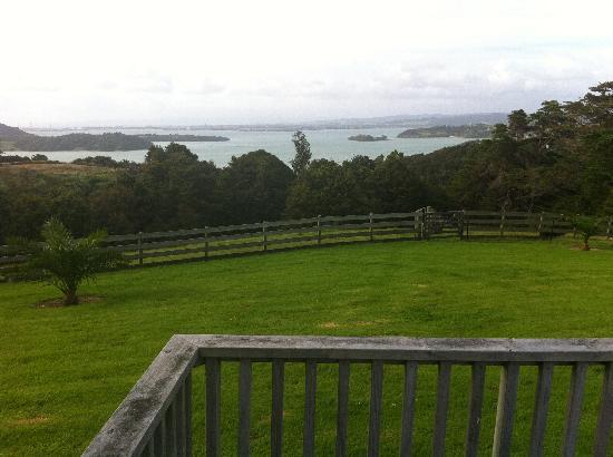 Kauri Villas: The View