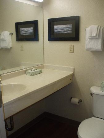 Extended Stay America - Nashville - Vanderbilt : Clean bathroom. Bring your own hair dryer.