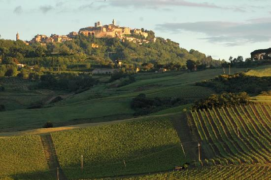 La Casina: View of Montepulciano