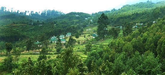 Pazhathottam, India: Camp Noel Resort