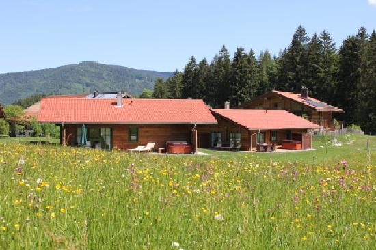 Chalets & Apartments beim Waicher: Blumenwiese