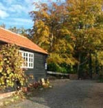 Kiln Farm Bed and Breakfast: Car Parking Area & Art Studio
