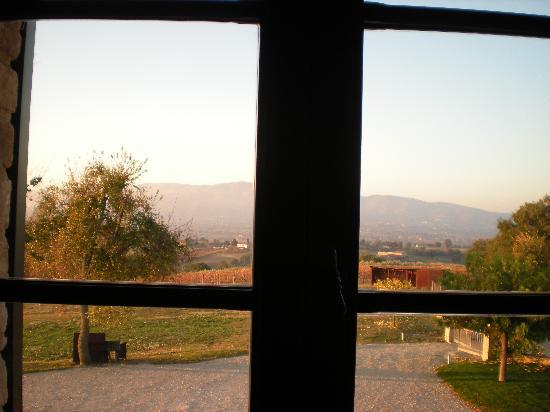 B&B Casa Laura: questa è dalla finestra