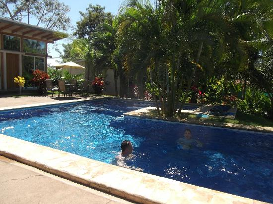 Fuego Lodge: The fabulous pool