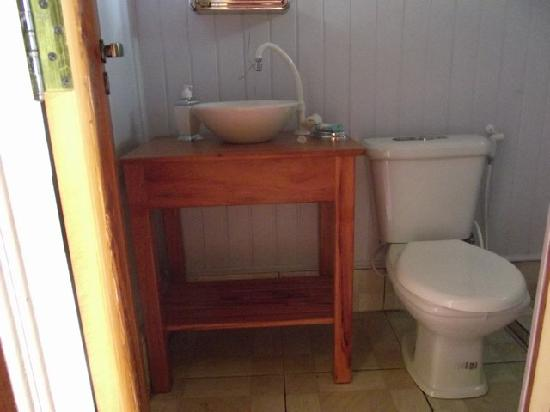 Amazon Arowana Lodge: Bathroom of  the chalet