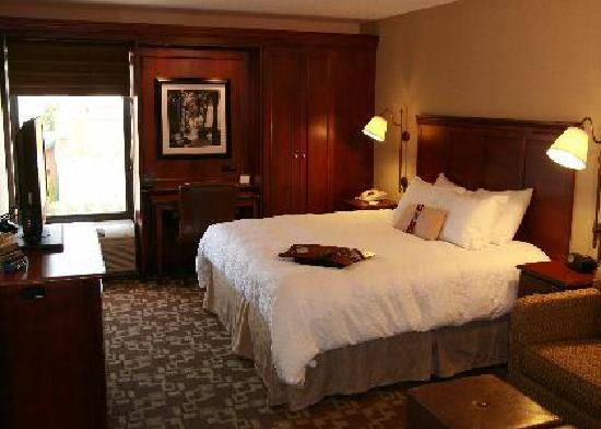 Hampton Inn Indianapolis-South: King Deluxe W/Sofa Sleeper Room