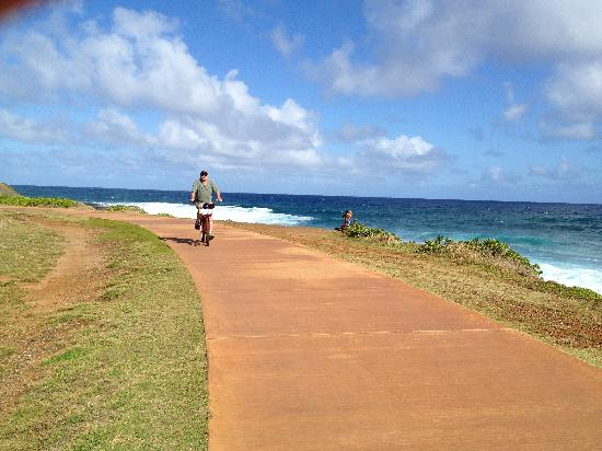Coconut Coasters Beach Bike Rentals: Great trails and we saw lots of whales blowing