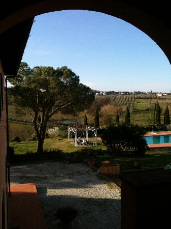 Agriturismo La Colombaia: View from our front door & window