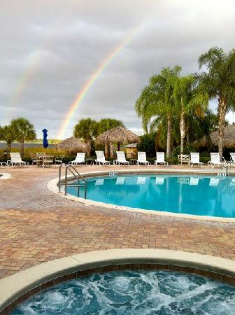 Davenport, FL: Hot tubs at pool area