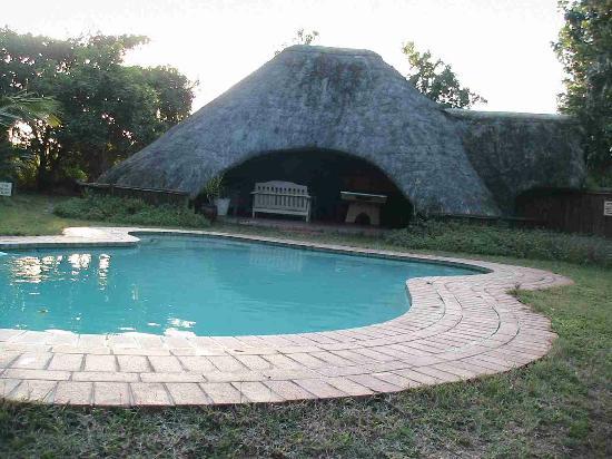 Emdoneni Lodge: Pool, abends sind hier Zebras