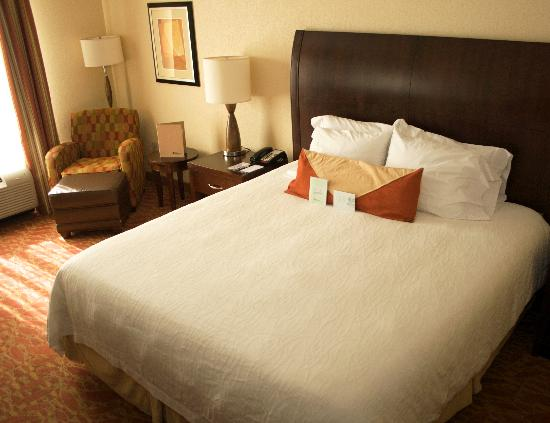 Hilton Garden Inn Augusta: King Room