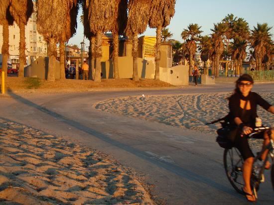 Sea Shore Motel: Sunset bike riding along the beachfront in Venice Beach/Santa Monica