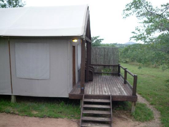 Nkambeni Safari Camp: Zelt mit Terrasse