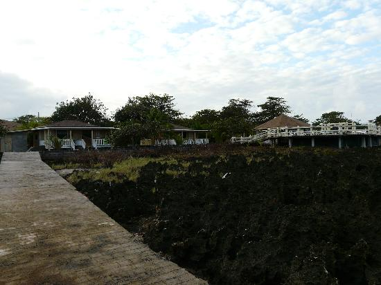 Seagrape Plantation Resort: bungalows and ocean view