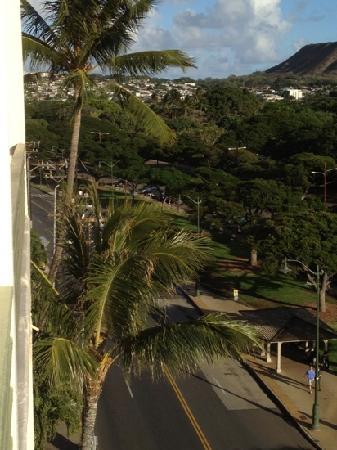 Castle Waikiki Grand Hotel: view to zoo across street