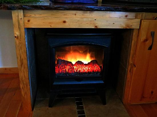 Heron's Rest Bed & Breakfast: Electric fireplace