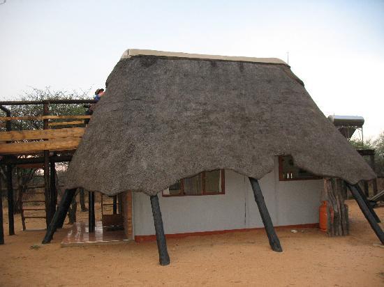 Khama Rhino Sanctuary: The A-frame