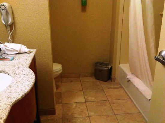 Hampton Inn & Suites Grand Rapids Airport / 28th St: Bathroom