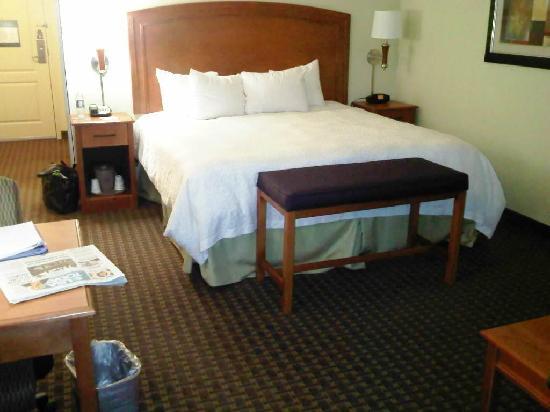Hampton Inn & Suites Grand Rapids Airport / 28th St: King Room-3