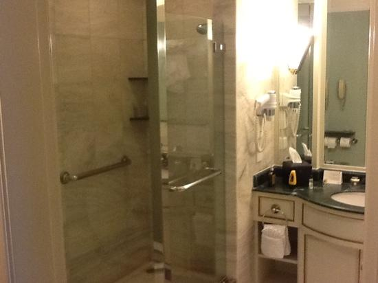 JW Marriott Hotel Surabaya: shower box