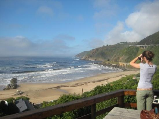Wilderness Beach house : the amazing view