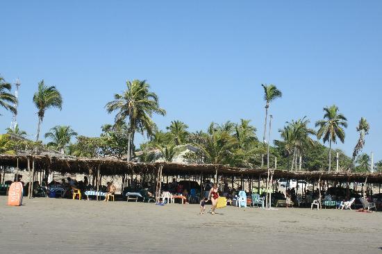 Playa Revolcadero : Las palapas