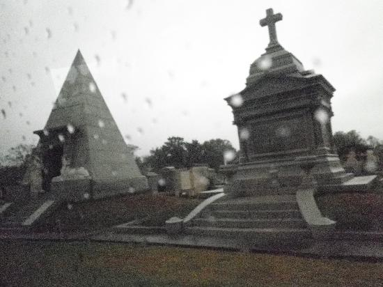 Dixie Tours New Orleans: driving through the cemetery