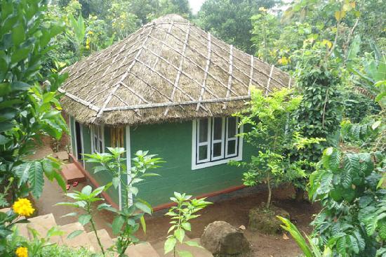 Harithavanam Farm House: cottages