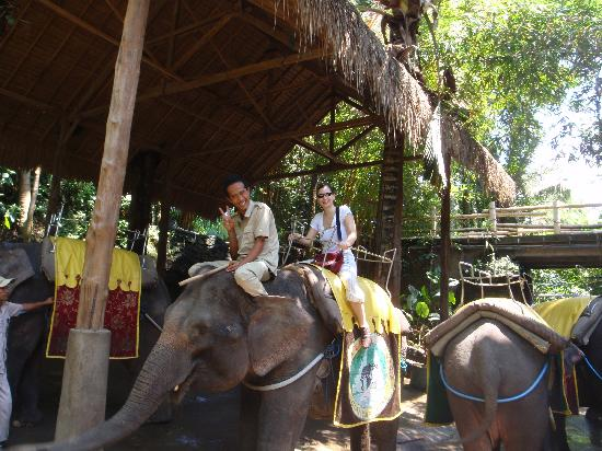 Elephant ride image courtesy of Tripadvisor
