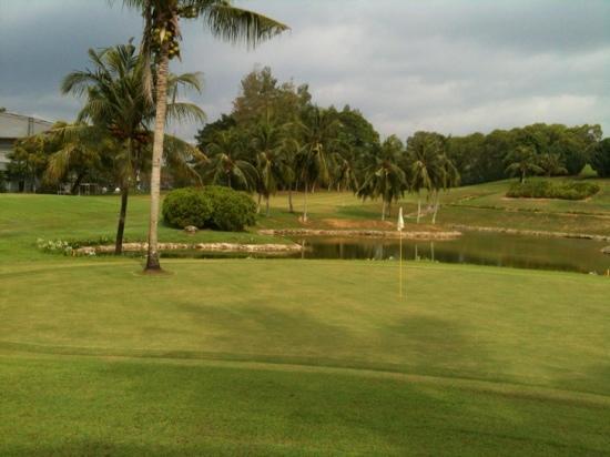 Thistle Port Dickson Resort : Coconut tree on the 8th green, par 3