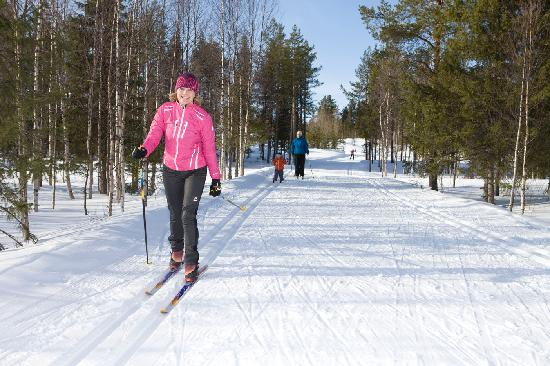 Cross-country skiing at Levi