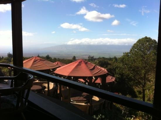 The Kula Lodge: view from our table (grand terrace in foreground- open weekends)
