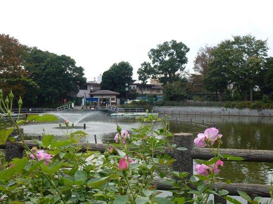 Meguro (เขตเมงุโระ) ภาพถ่าย