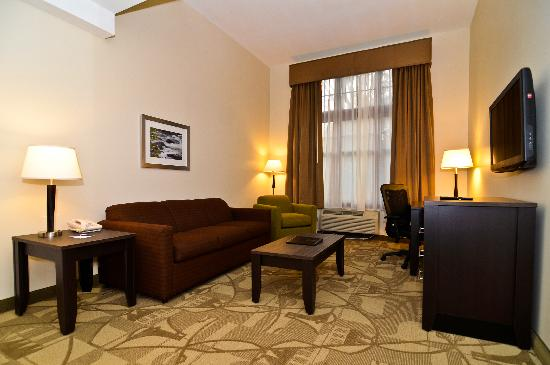 BEST WESTERN PLUS The Inn & Suites At the Falls: King Suite Livingroom with sofa bed