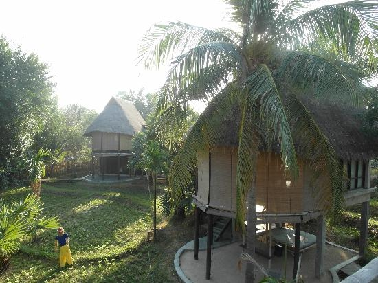 La a natu Bed & Bakery: Bungalow on the rice field