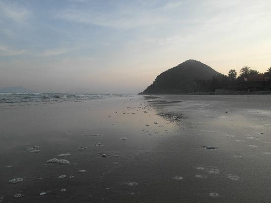 La a natu Bed & Bakery: The beach