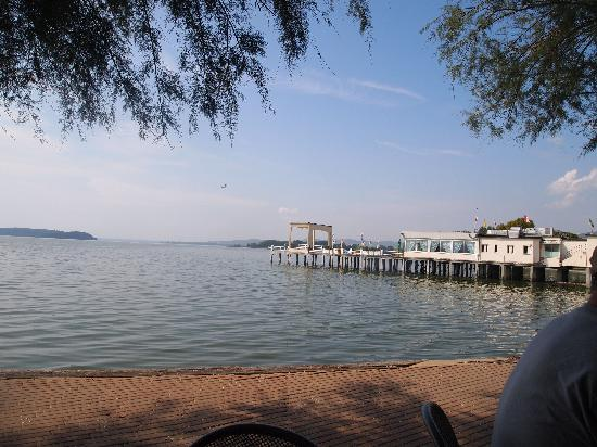 Agriturismo Casale il Picchio : Nearby Lago Tresimeno, Excellent