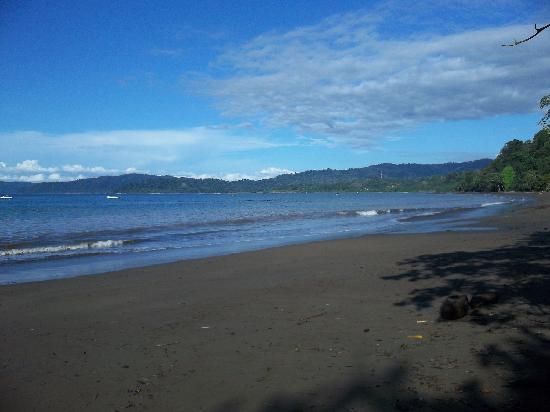 Casita Corcovado: pristine beach in front of Casita