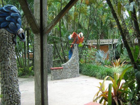 Hotel Rústico de Playa Perla Negra: La entrada al Perla Negra