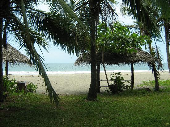 Hotel Rustico de Playa Perla Negra: Vista de la playa desde la puerta del hotel