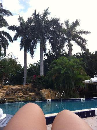 Renaissance Boca Raton Hotel: Spend most of my time on the pool side, in the pool and hottub.