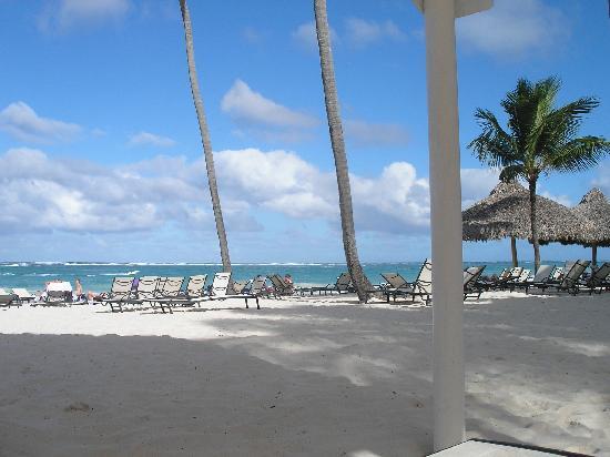 Paradisus Punta Cana Resort : Des chaises longues, il y en a beaucoup. Nul besoin d'aller y déposer vos serviettes au petit ma