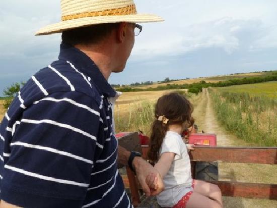 Estancia Don Joaquin: Paseo en zorra de tractor