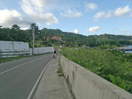 Casa Maria Hotel: Road to Casa Maria (not recommended that you walk here Bcos of vehicles)