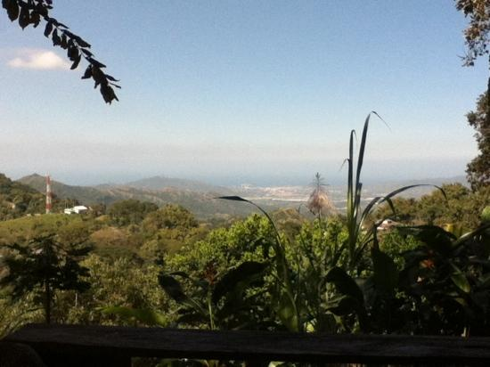 Casa Loma Minca: view from casa loma