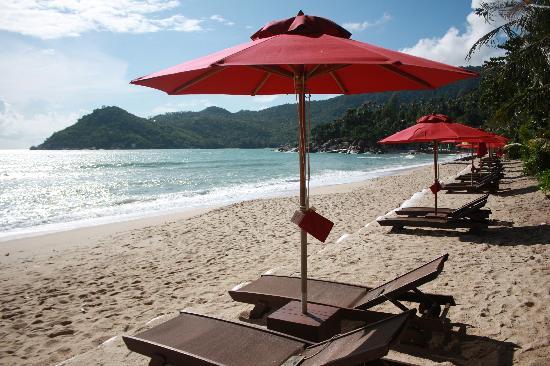 Anantara Rasananda Koh Phangan Villas : The beach